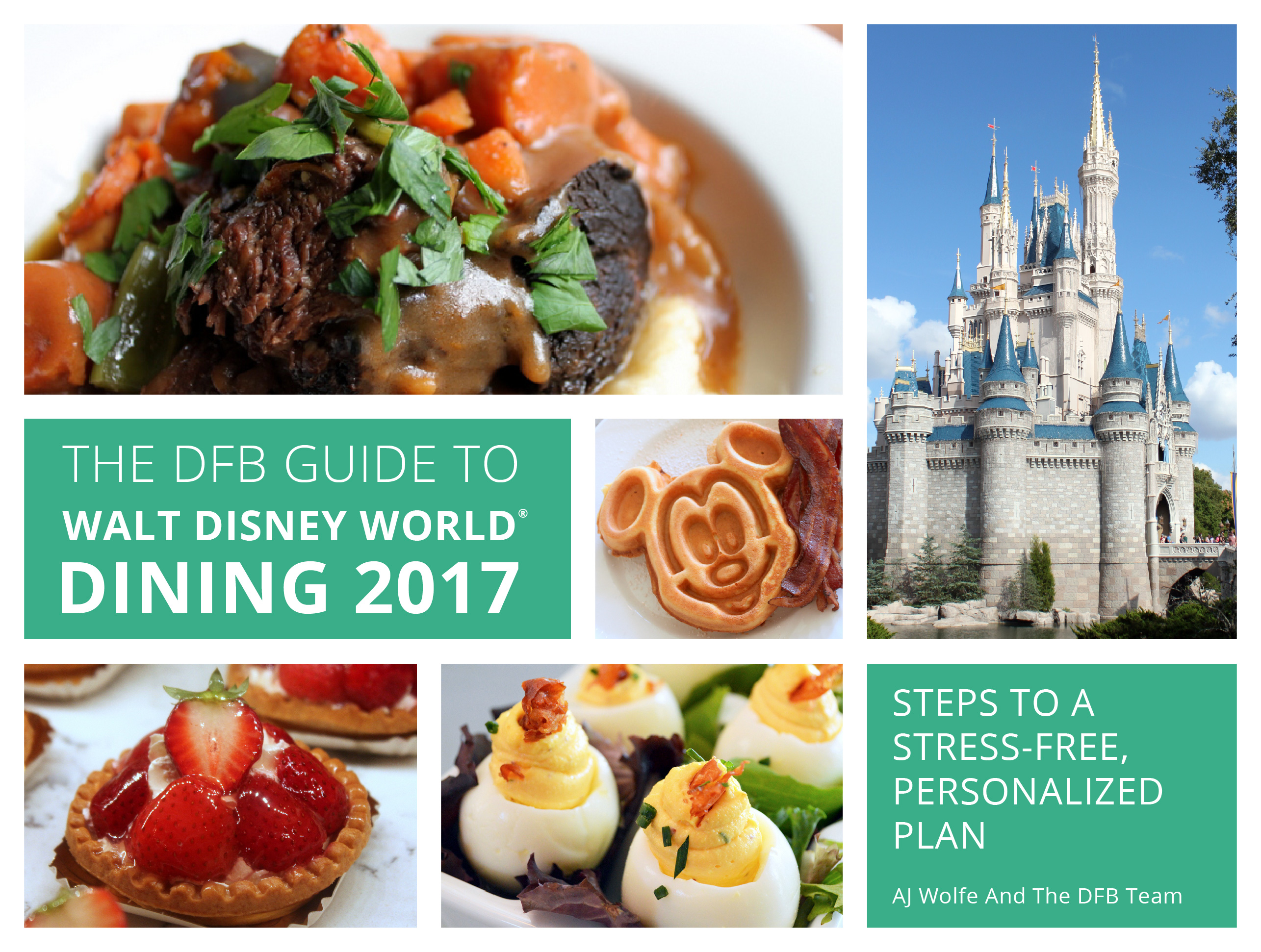 2017-dfb-guide-cover-mockups-11