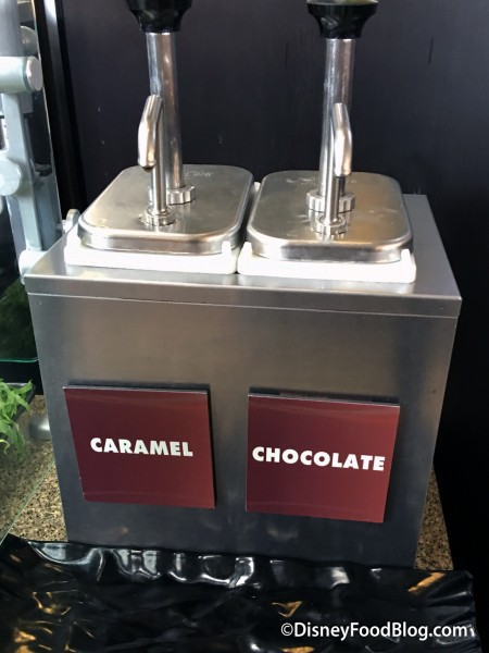 Caramel and Chocolate Sauce Dispensers