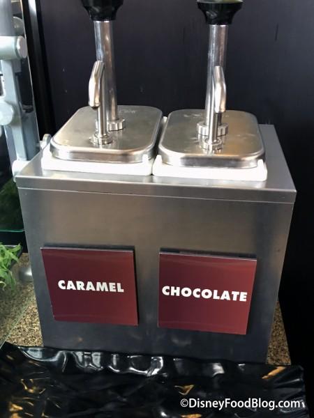 Caramel and Chocolate Sauce Dispensers