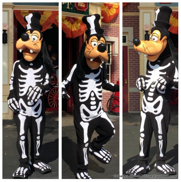 Skeleton Goofy!
