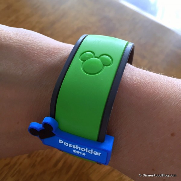 There Are Lots of MagicBand Colors to Choose From!