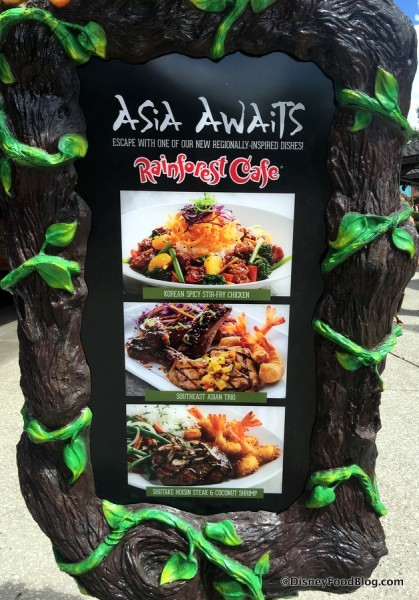 Rainforest Cafe Asian Dishes