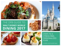 2017-dfb-guide-cover-mockups-r2-003