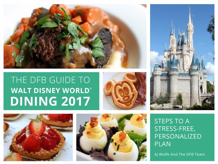 2017-dfb-guide-cover-mockups-r2-02