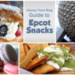 Grand Launch and Discount! The DFB Guide to Epcot Snacks e-Book, 2018-19 Edition