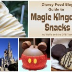 Now Available! The DFB Guide to Magic Kingdom Snacks e-Book, 2018-19 Edition
