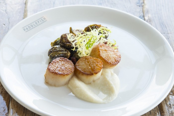 Scallops with Brussel Sprouts and Cauliflower Puree ©Paddlefish
