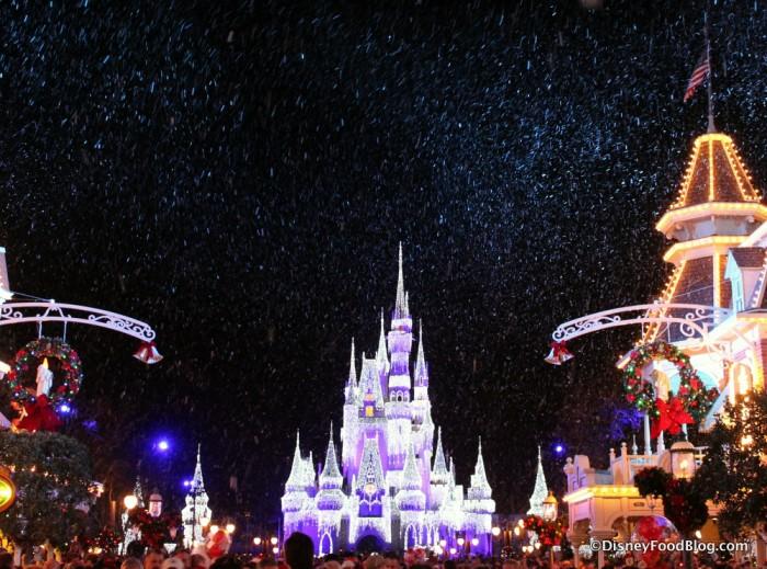 Cinderella Castle all lit up!