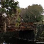News: Pandora — The World of AVATAR Opens May 27th in Disney's Animal Kingdom