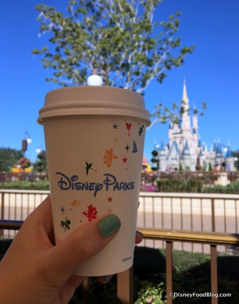 Start Your Day by Cinderella Castle