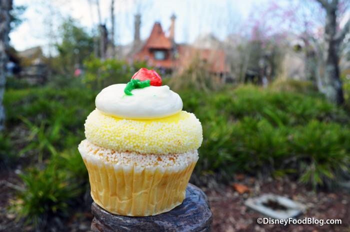 Belle Cupcake from Big Top Treats in Magic Kingdom