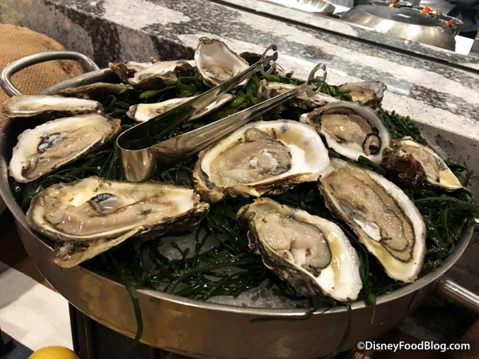 Oysters -- Up Close