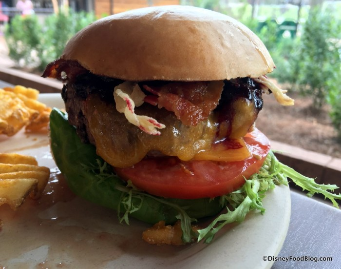 Bison Cheeseburger