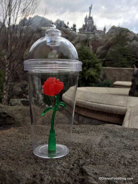 Enchanted Rose Cup