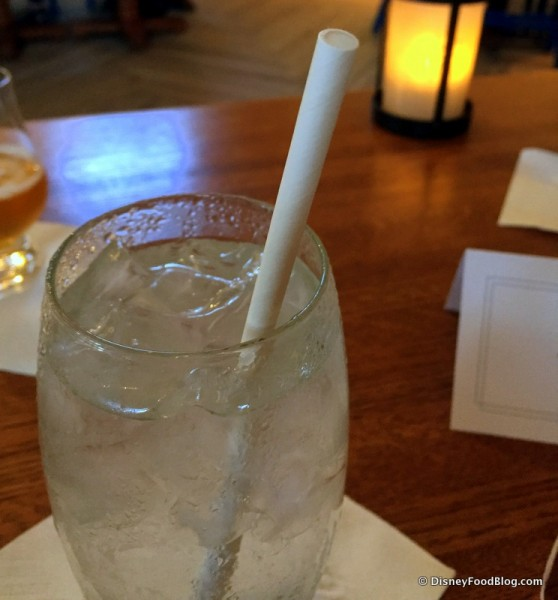 Paper Straws to Protect Sea Turtles and Other Sea Life
