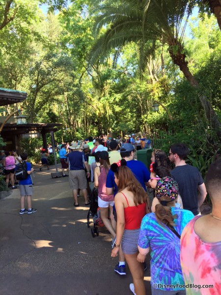 Line to get into Pandora from the front of Animal Kingdom