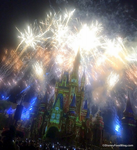 Magic Kingdom's Happily Ever After Fireworks Spectacular