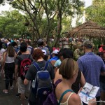 DFB Video: How to OUTSMART the Crowds in Disney World