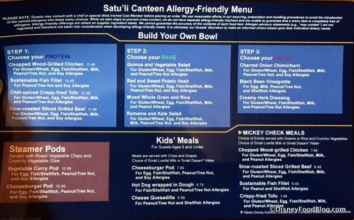 Allergy-friendly Lunch and Dinner Menu