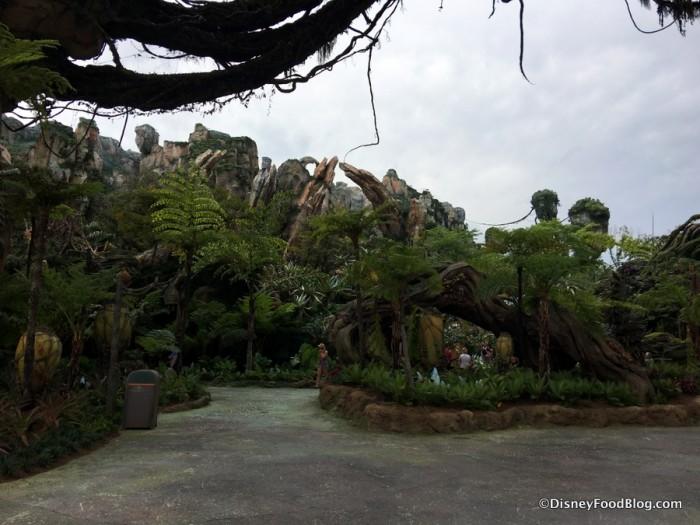 Pandora paths