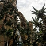 New DFB Video: A Review of Pandora – The World of Avatar at Disney's Animal Kingdom