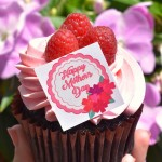 Celebrate Mother's Day at Disney World and Disneyland!