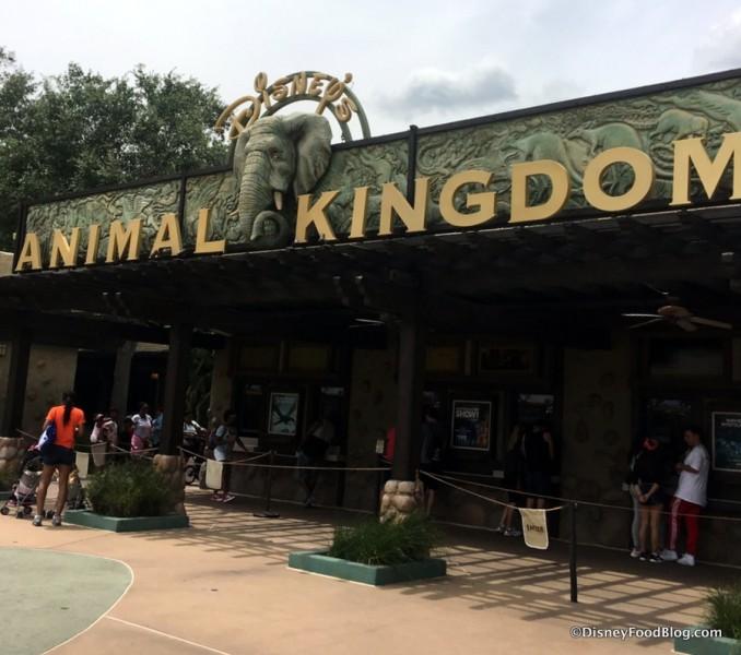 Welcome to Animal Kingdom!