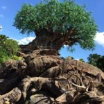 New Merch, Menus, and More in Disney World's Animal Kingdom