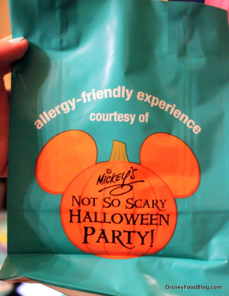 Teal Allergy-Friendly Trick or Treat Bag