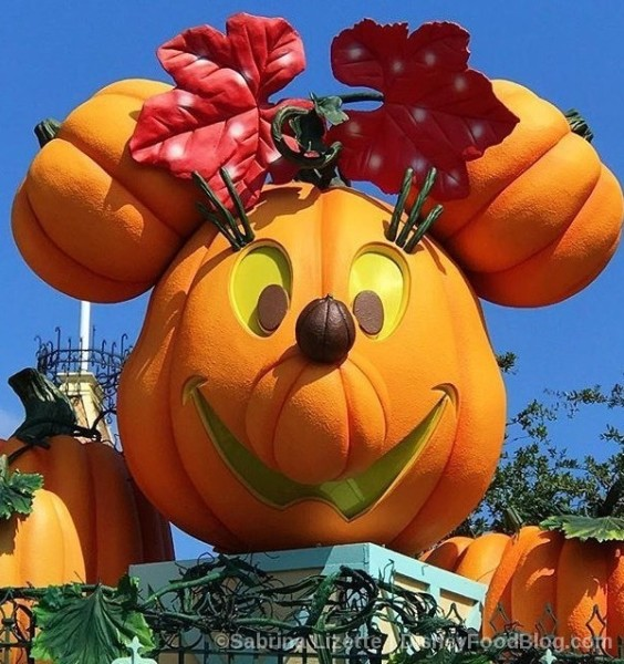 Disneyland Minnie Mouse Jack O'Lantern!