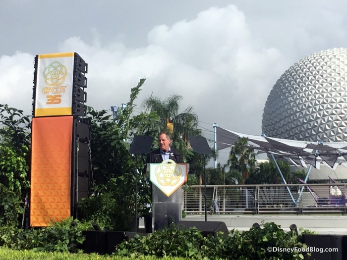 Vice President of Epcot