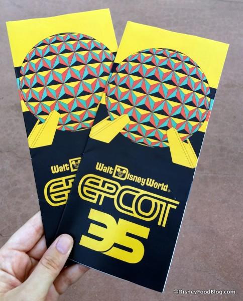 Epcot 35