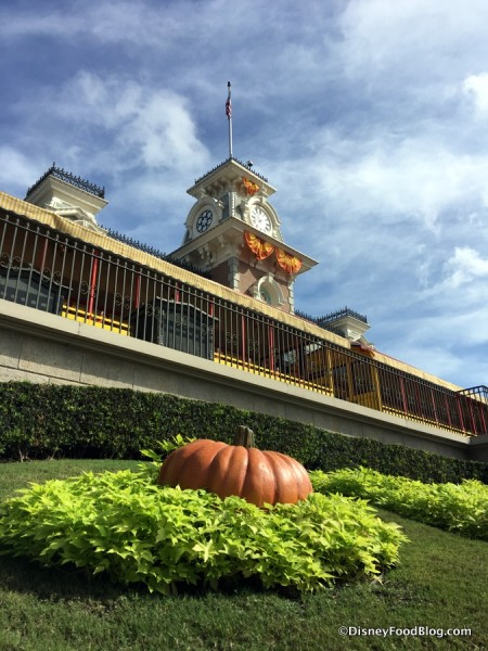 Fall in Magic Kingdom