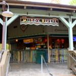 Review: Frosé at Muddy Rivers Pool Bar in Disney World's Port Orleans Resort, Riverside
