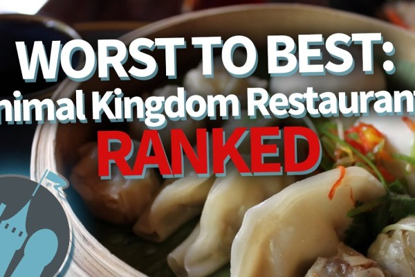DFB Video: Animal Kingdom Restaurants RANKED
