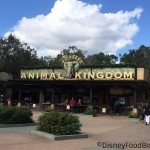 Disney World's Animal Kingdom Menu UPDATES! What's New To Eat?!