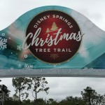 The Disney Springs Christmas Tree Trail Now Open for 2017 — Now With Food! (Sort of!)