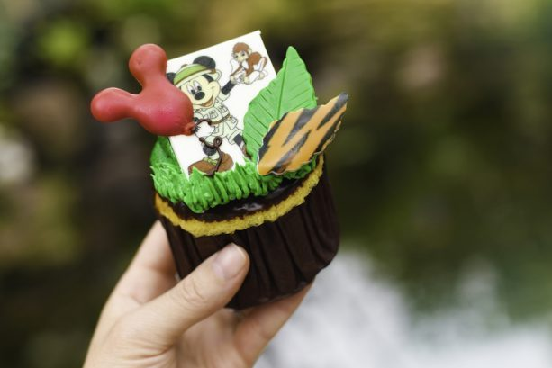 Safari Cupcake ©Disney