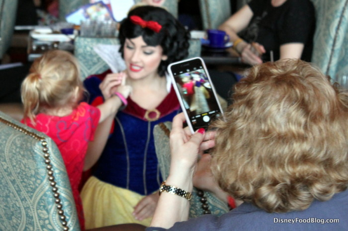 Meet and Greet at Cinderella's Royal Table