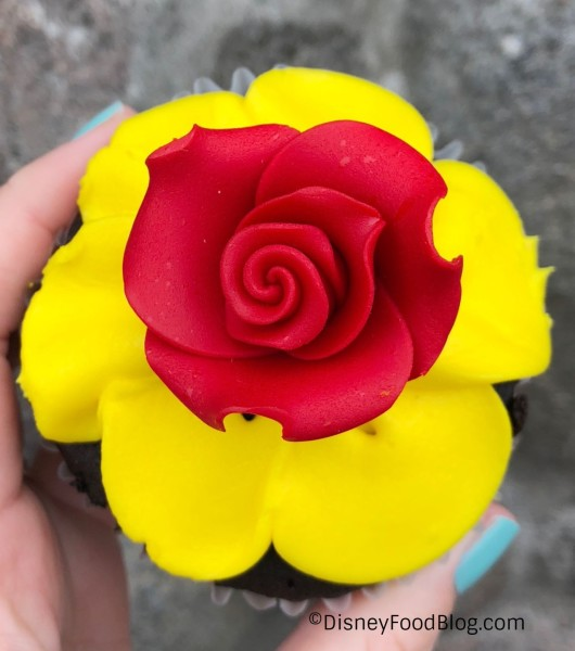 The Rose Up Close