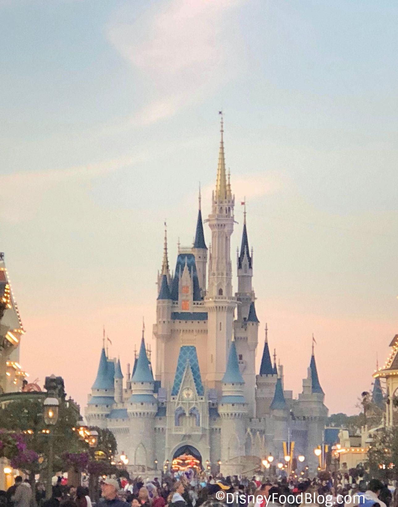 Mothers Day Brunch At Walt Disney World