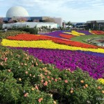 Tips You NEED TO KNOW For the Epcot Flower and Garden Festival!