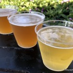 Best Drinks at the Epcot Flower and Garden Festival