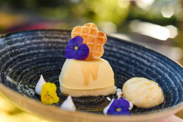 Local Wildflower Honey-Mascarpone Cheesecake with Orange Blossom Honey Ice Cream garnished with Fennel Pollen Meringue Kisses ©Disney