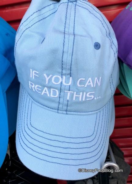 Spaceship Earth Hat