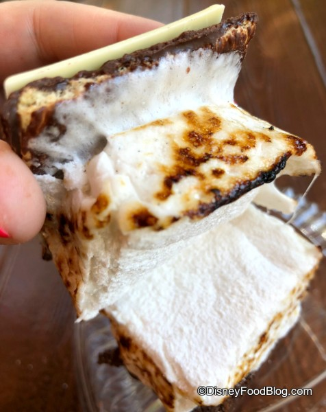S'more Marshmallow!