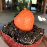 A NEW Dessert at The Mara in Disney's Animal Kingdom Lodge