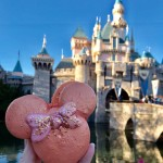 Rose Gold Macarons Debut at Disneyland