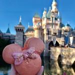 Rose Gold Macarons Debut at Disneyland