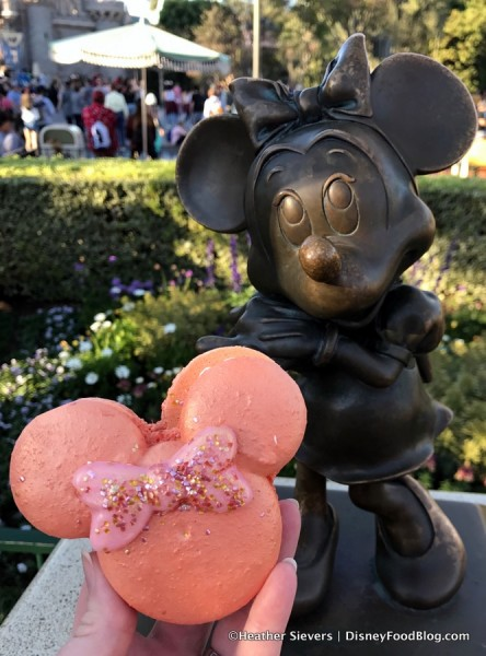 Minnie and the Rose Gold Macaron